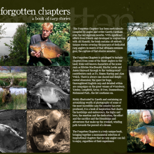 The Forgotten Chapters Website